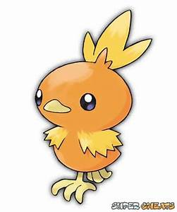 Image Gallery torchic