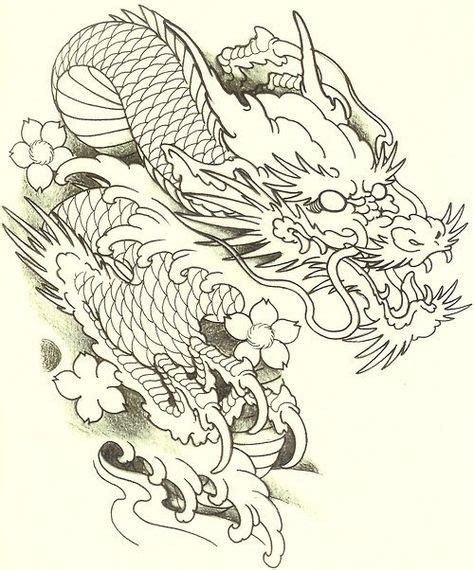 Drawings Of Japanese Dragons  Wwwpixsharkcom Images