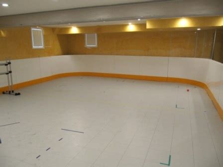 Basement inline hockey rink | Our basement rink projects ...