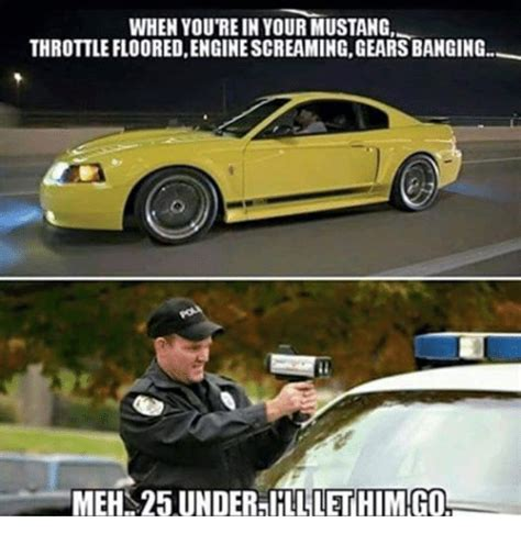 Mustang Memes - funny meme about mustang cars pictures to pin on pinterest pinsdaddy