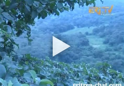 The Beauty of Gindah Nature, Landscape, City & People of ...