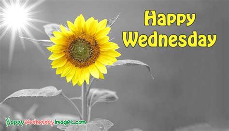 Images Of Happy Wednesday Happy Wednesday Image Happywednesdayimages