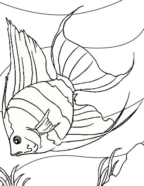 Tropical Fish Coloring Pages by Tropical Fish Coloring Pages Az Coloring Pages