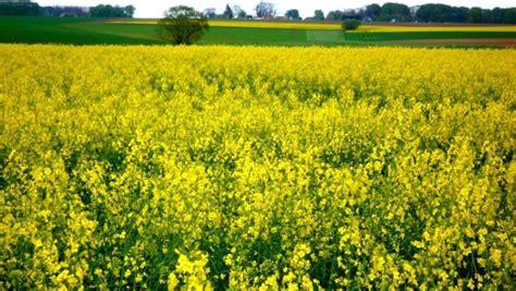 chambre agriculture haute normandie la normandie est la 3e région la plus dynamique en