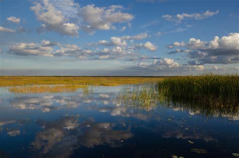 okeechobee lake florida water caloosahatchee carlton river fishing dam county waterway ward harmful algal things area hendry clewiston report sanibel