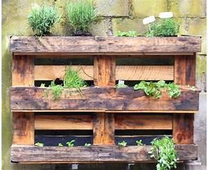 Mur Végétal En Palette : interesting fabriquer un mur v g tal ext rieur avec plantes for mur vegetal avec palette en bois ~ Melissatoandfro.com Idées de Décoration