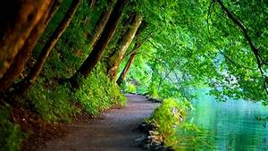 Nature Wallpapers HD Landscape Pictures