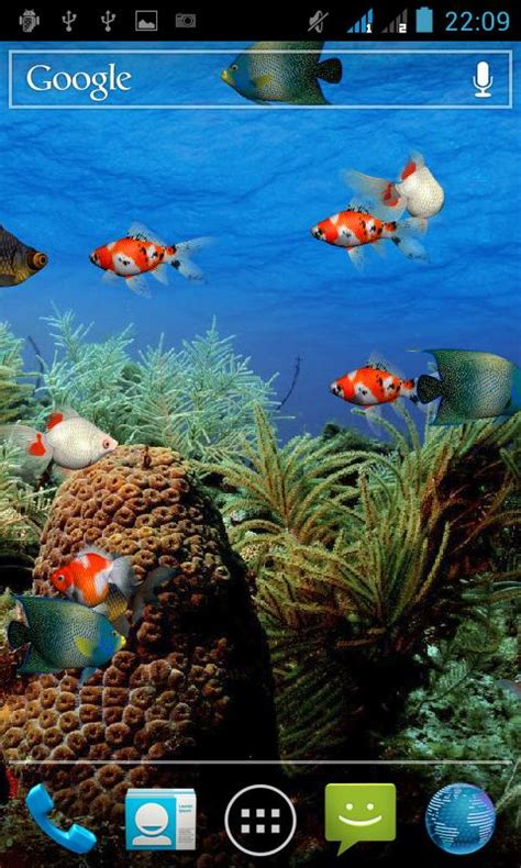 aquarium  wallpaper windows  wallpapersafari