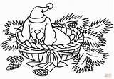 Coloring Christmas Buffalo Water Printable Claus Merry Santa Happy Gcssi Anima sketch template