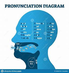 Pronunciation Diagram Chart With Letters And Corresponding