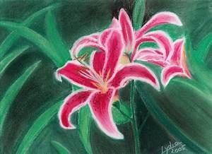 Feuille De Lys : dessin pastel fleurs ~ Nature-et-papiers.com Idées de Décoration