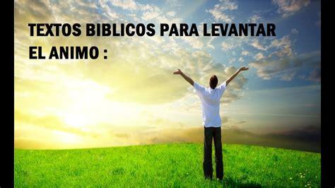 textos biblicos para levantar el animo