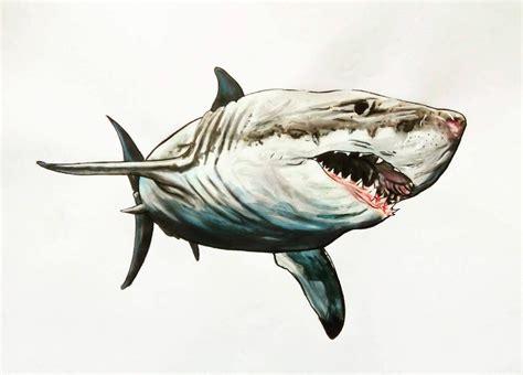 que choisir ordinateur de bureau dessin requin blanc coloriages store