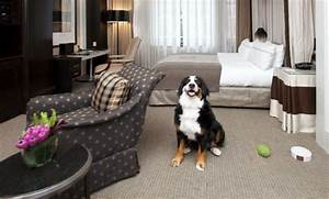 pet owners pet sitters check list home sitters With the dog house pet resort