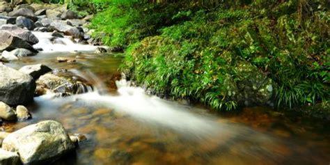 5 sungai paling bersih sedunia merdeka