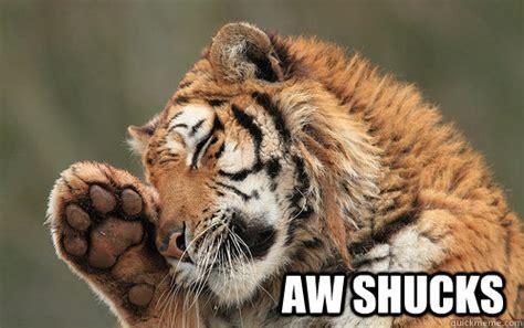 Awwww Meme - aw shucks shucks tiger quickmeme