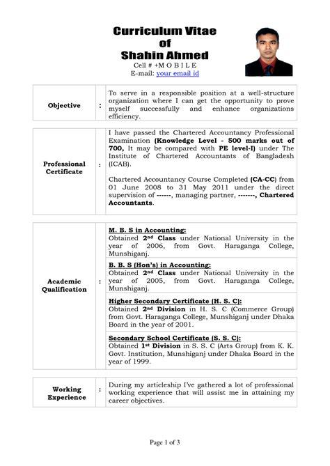 professional curriculum vitae format template