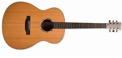 Guitar Gambar Chordophones Instrument Gitar Musical Neck