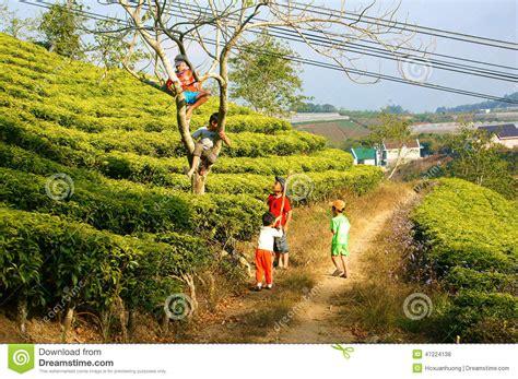 asian children active kid outdoor activity editorial