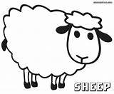 Sheep Coloring Pages Baa Print Colorings sketch template
