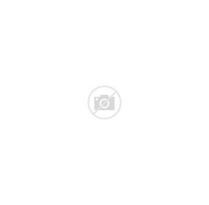 Baseball Vector League Plate Diamond Vectors Bat