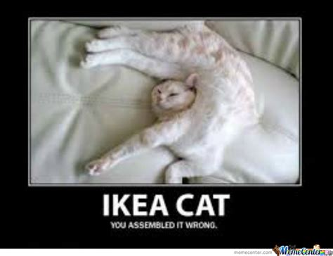 Ikea Meme - ikea cat by gigimasterxx meme center