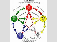 Fusion of the Five Elements Tao Yoga
