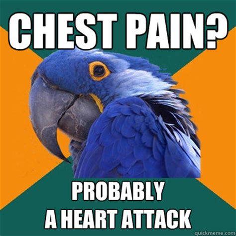 Chest Pain Meme - chest pain probably a heart attack paranoid parrot quickmeme