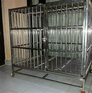 stainless steel dog cage johor petfindermy classifieds With metal dog cages for sale