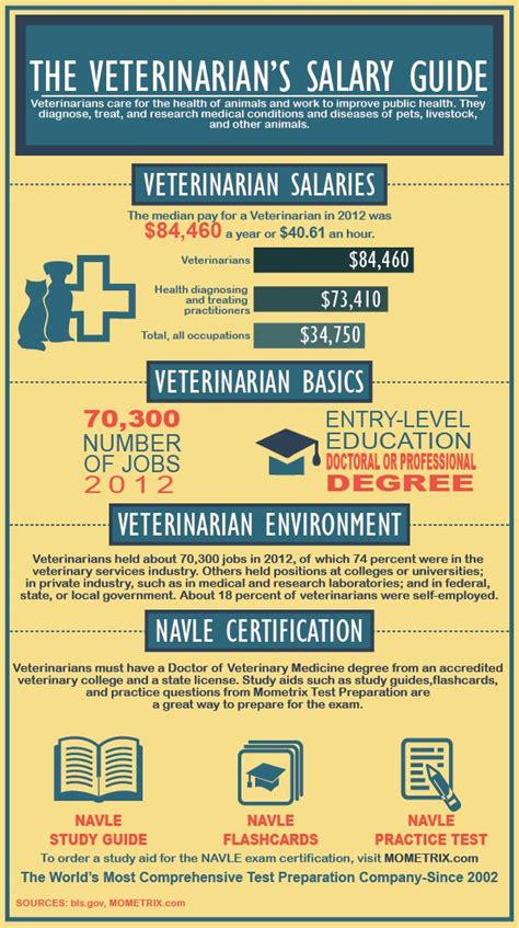 Vet Salary by 1000 Ideas About Veterinary Salary On