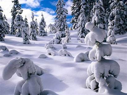 Snow Wallpapers Desktop Backgrounds Bonewallpaper Tag Sponsored