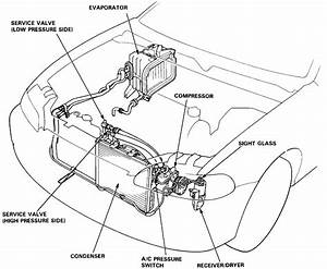 Honda Civic Radiator Fan Relay Location  Honda  Free Engine Image For User Manual Download