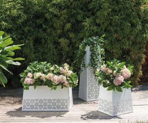 Kübelpflanzen Für Terrasse by K 252 Belpflanzen F 252 R Balkon Und Terrasse Bauemotion De