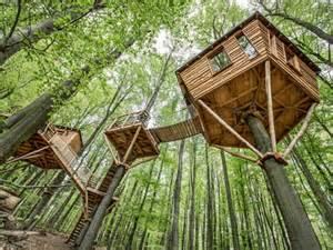 maison en bois dans les arbres cabanes dans les arbres 45 id 233 es de construction et d 233 co