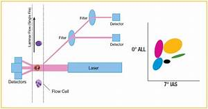Automated Cell Counting based on Optical technology ...