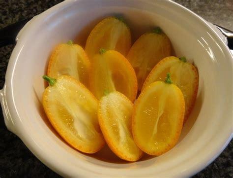 cuisine basse temperature philippe baratte kumquats fondants en garniture blogs de cuisine