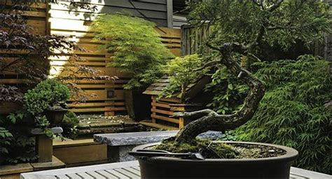 Small Japanese Garden Ideas #6753