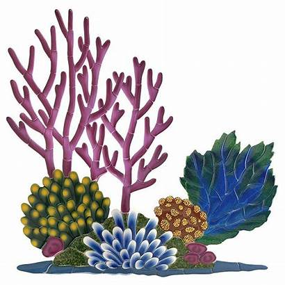 Coral Reef Drawing Clipartmag