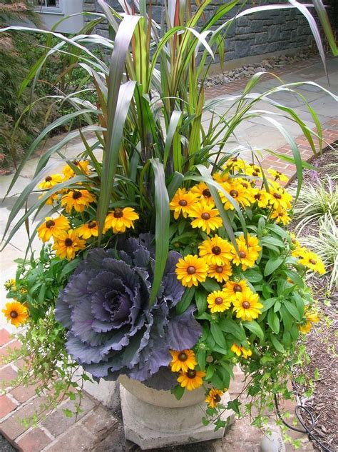 Fall Container Garden Very Drought Tolerant Gardening