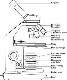 microscope diagram google search equipment pinterest With pin diagram of uc