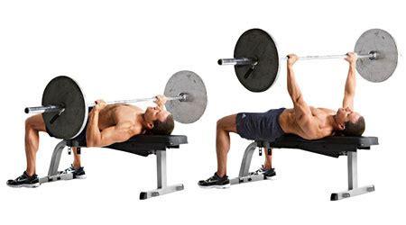 barbell bench press points importants concernant le d 233 velopp 233 233 adg