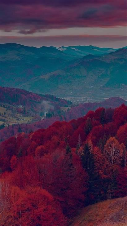 Screensavers Wallpapers Iphone Dark Fall Nature Tree