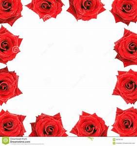Flower Frame Border Red Velvet Roses With Dew Drop Royalty ...