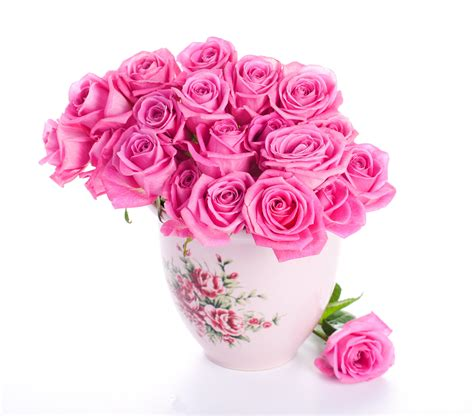 valentines day gift 39 s top 100 beautiful flowers images wallpaper photos