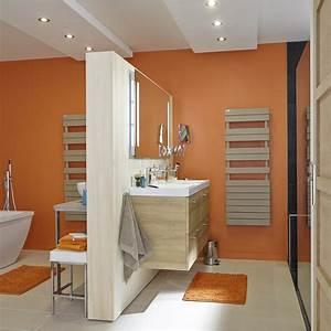 seche serviettes eau chaude acier acova alpaga symetrique With quelle couleur avec du bleu 3 davaus chambre couleur beige et bordeau avec des