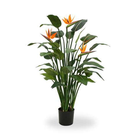 beautifull artificial strelitzia bird of paradise plant 150cm bird of paradise maxifleur