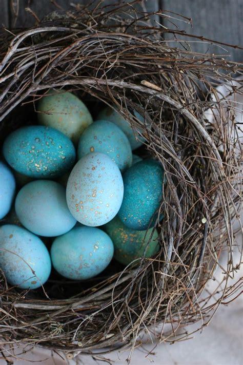 cool easter eggs 20 cool easter egg ideas festival around the world