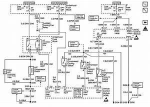 Very Best Freightliner M2 Bulkhead Module Diagram  Gi35