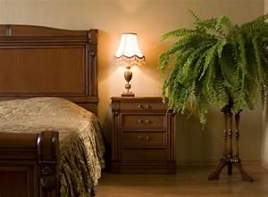 Pflanzen Im Schlafzimmer : sind zimmerpflanzen im schlafzimmer gesundheitsgef hrdend zimmerpflanzen garten ~ Indierocktalk.com Haus und Dekorationen