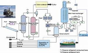 Process Flow Diagram Lng